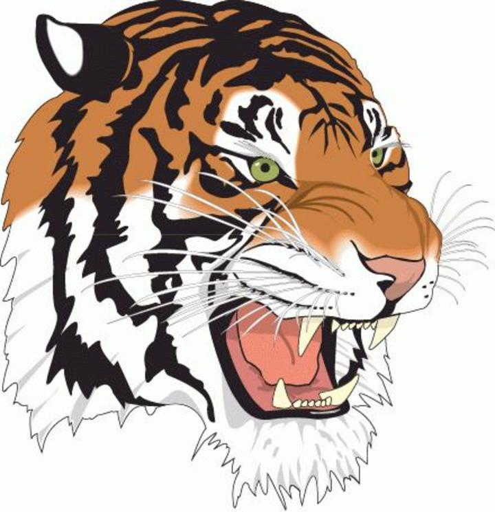 Tennessee State University mascot