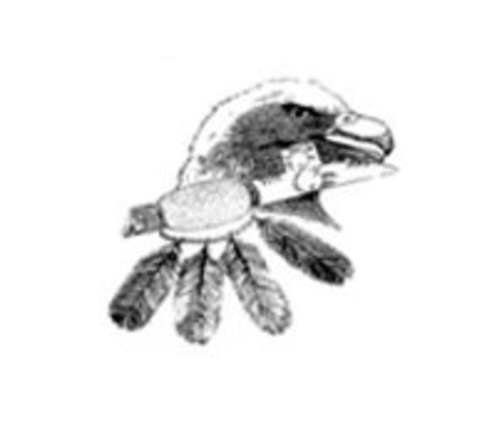 Fond du Lac Ojibwe School mascot