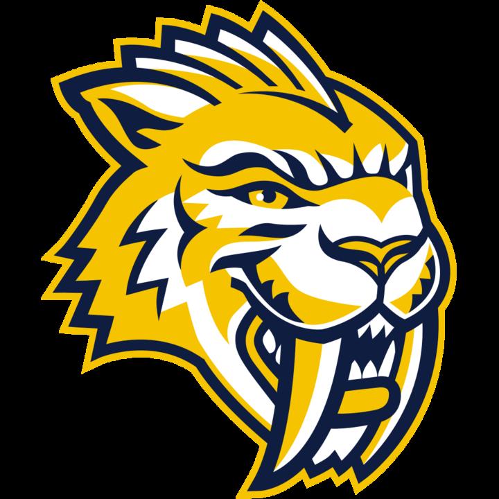 Maranatha Baptist University mascot