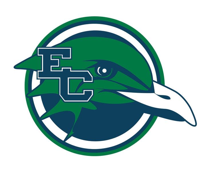 Endicott College mascot