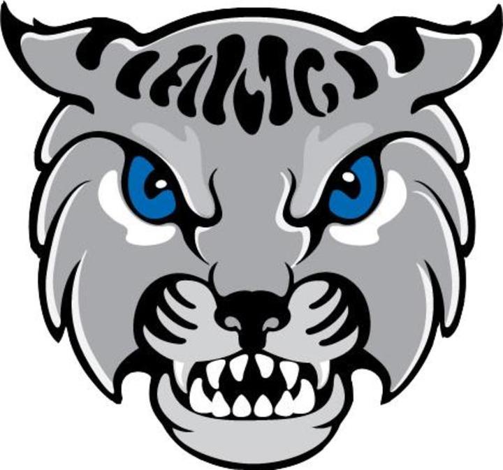Anna Maria College mascot