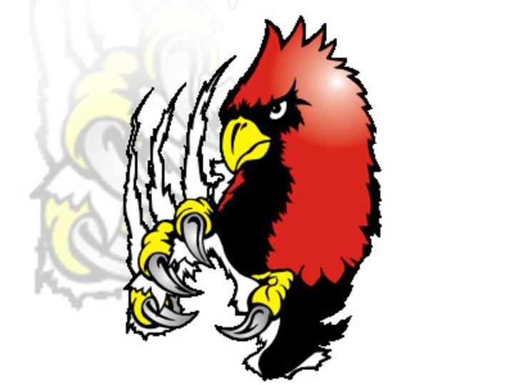Concordia U. Ann Arbor mascot