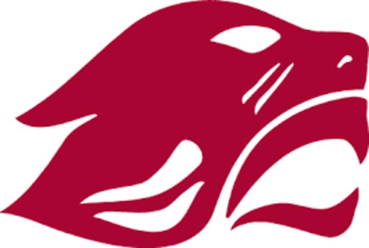 Concordia University Chicago mascot
