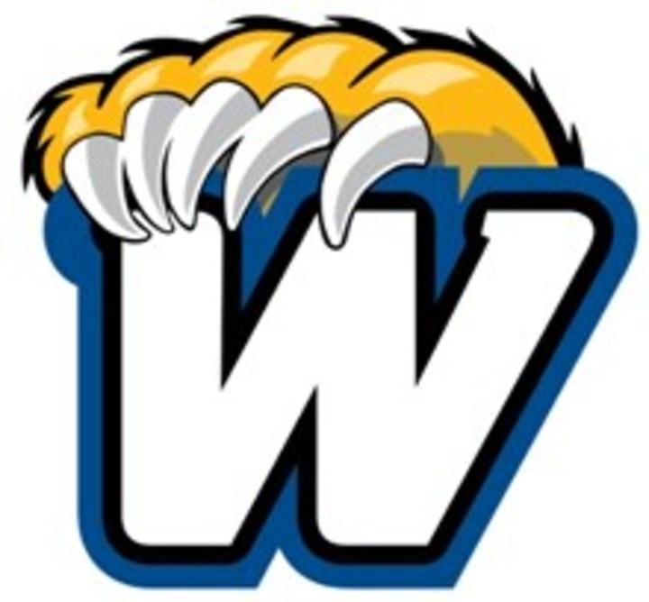 Western New England University mascot