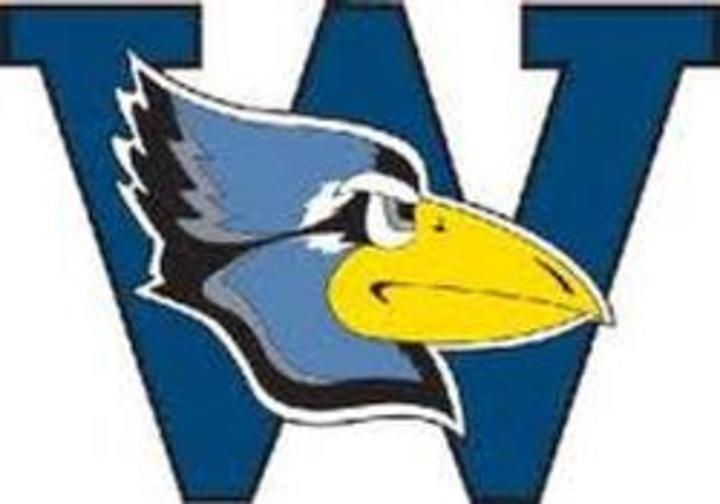 Westminster College (MO) mascot