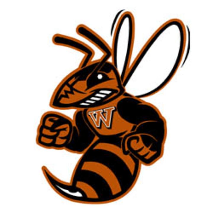 Waynesburg University mascot