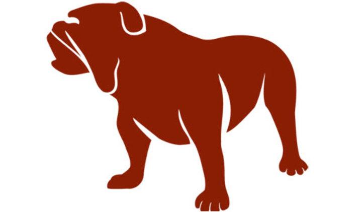 Montana Western mascot
