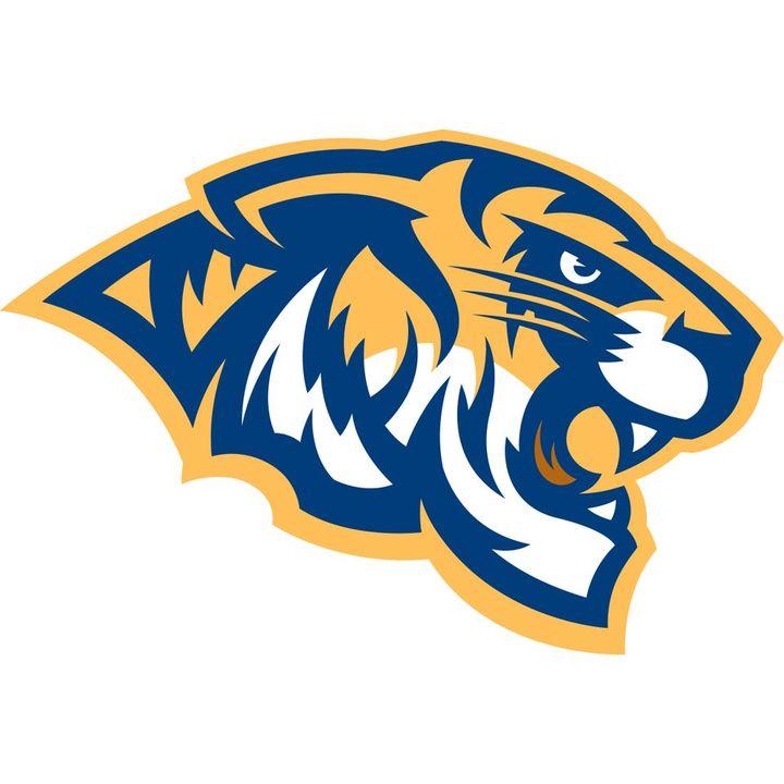 Central Christian College of Kansas mascot