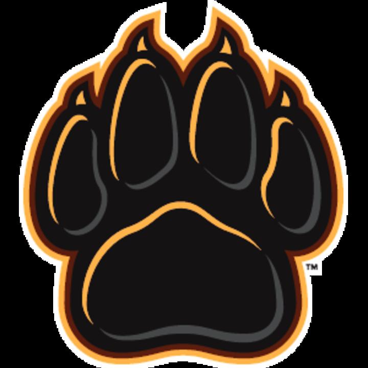 Adelphi University mascot
