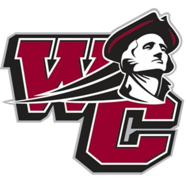 Washington College mascot