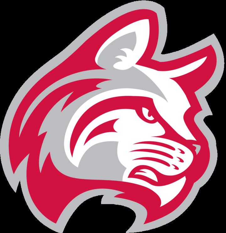 Indiana Wesleyan University mascot