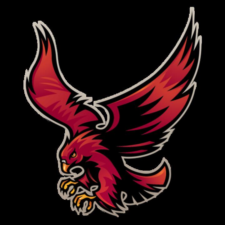 Simmons College of Kentucky mascot
