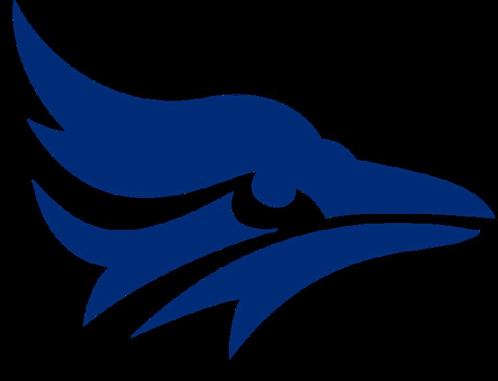Tabor College mascot