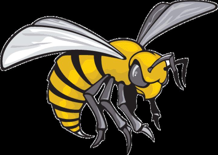 Alabama State University mascot