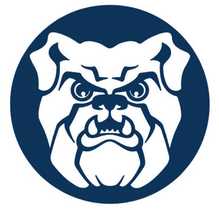 Breckenridge High School mascot