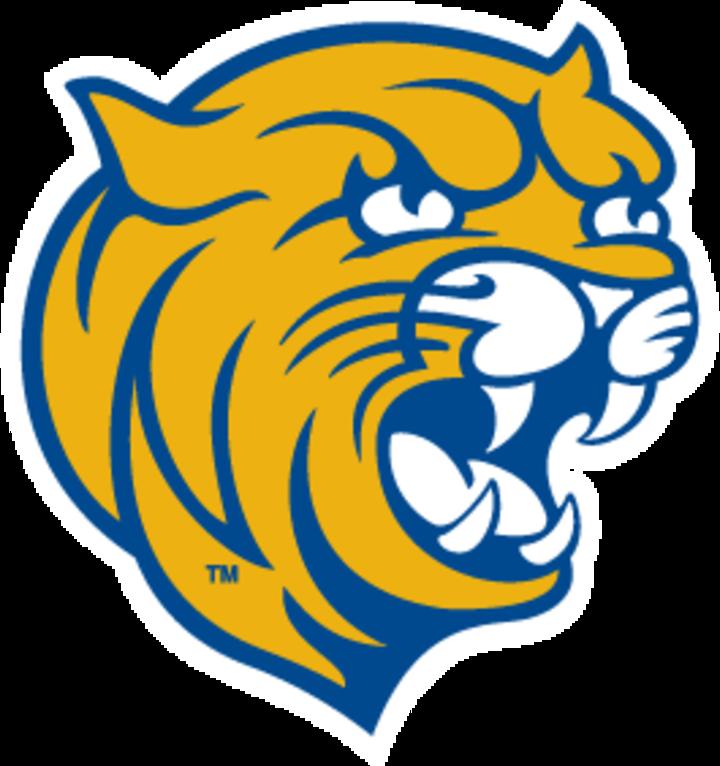 JWU Charlotte mascot