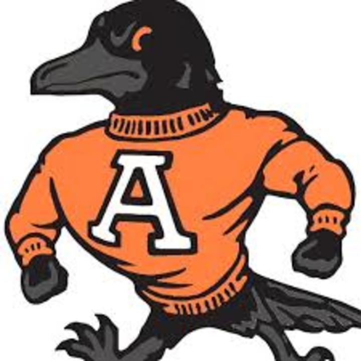 Anderson University mascot