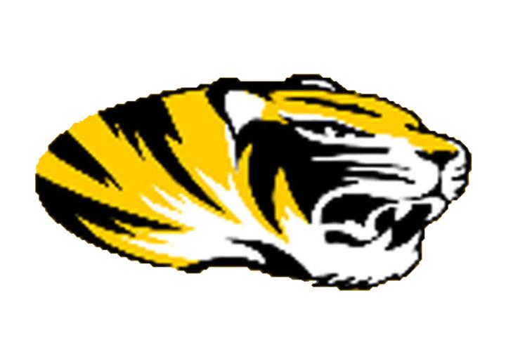 Northwestern High School mascot
