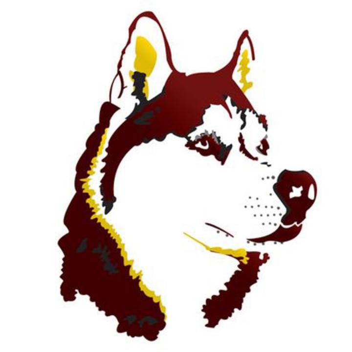 Pillager High School mascot