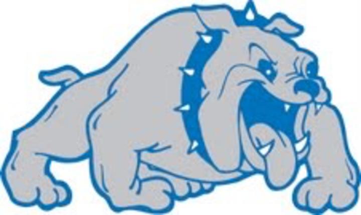 Swanville High School mascot