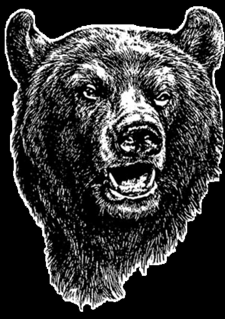 Bertha-Hewitt High School mascot