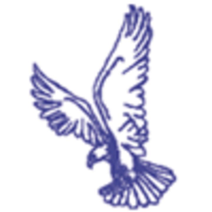 New York Mills High School mascot