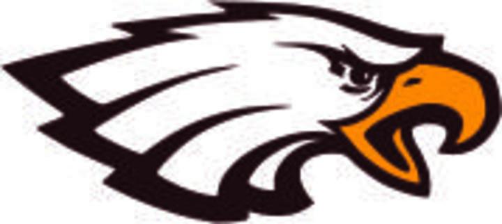 Solon Springs School mascot
