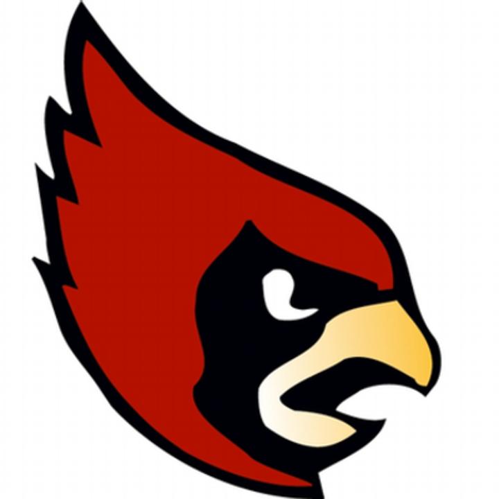 Washington Catholic High School mascot
