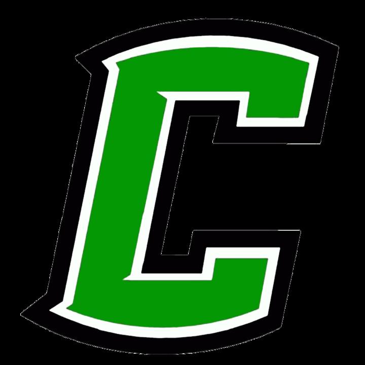 Celina High School mascot