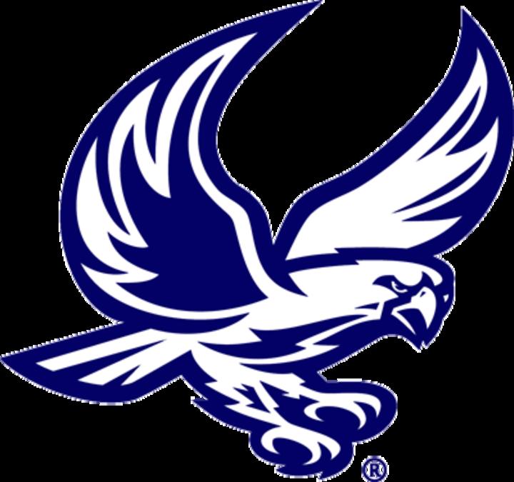 Messiah College mascot