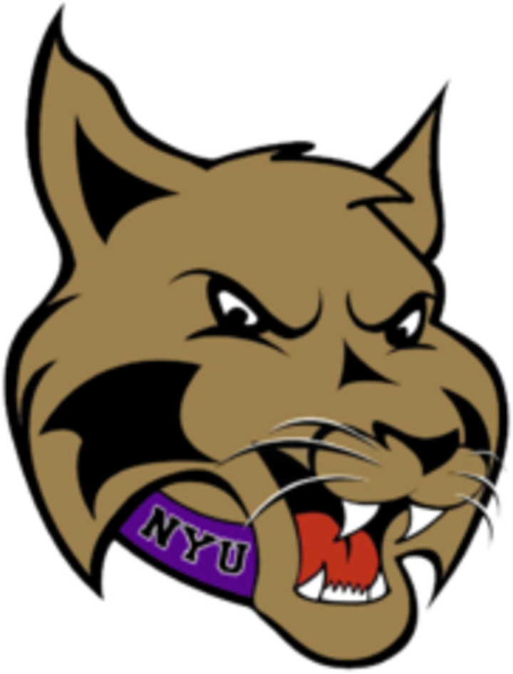 New York University mascot