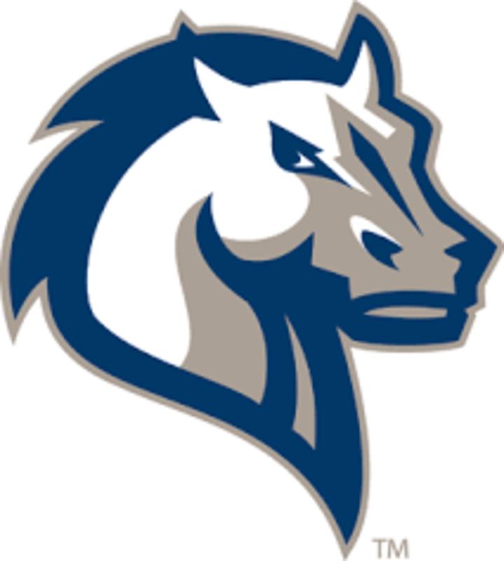 Mercy College mascot