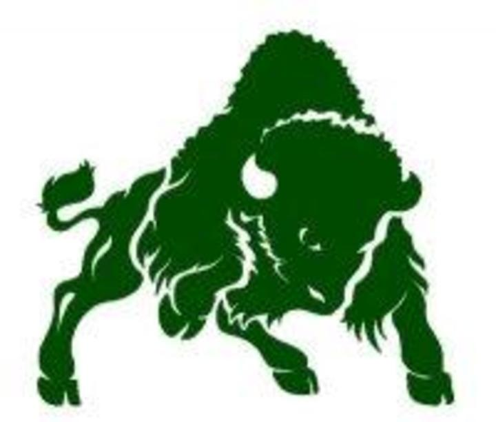 Bethany College mascot