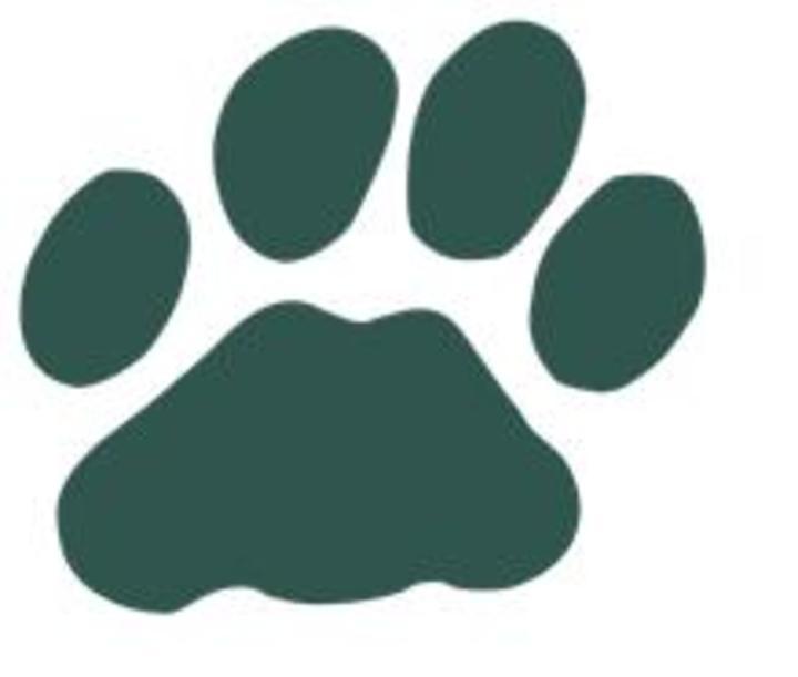 Lees-McRae College mascot