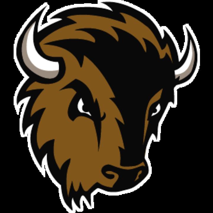 Milligan College mascot