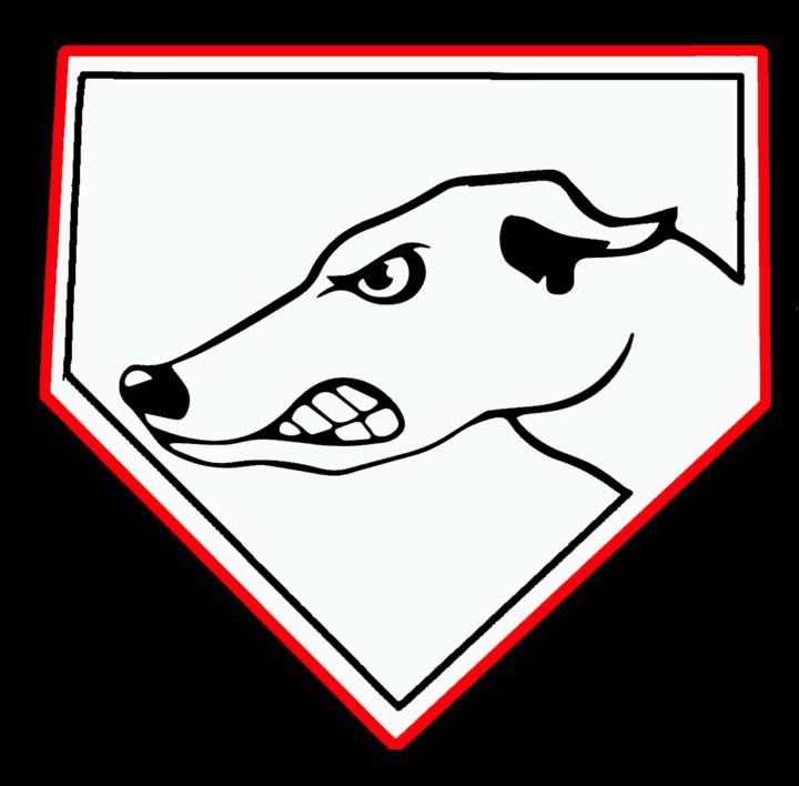 Hubbard High School mascot