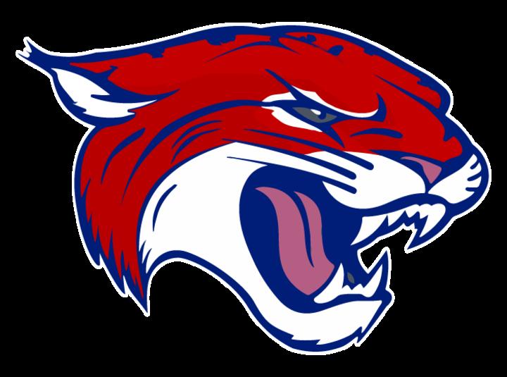 Tomball mascot