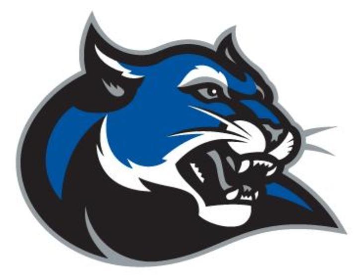 Culver-Stockton College mascot