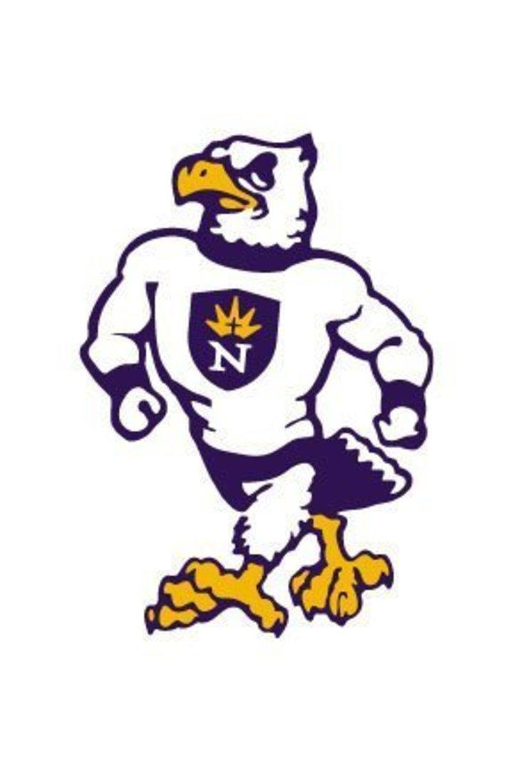 University of Northwestern - St. Paul mascot