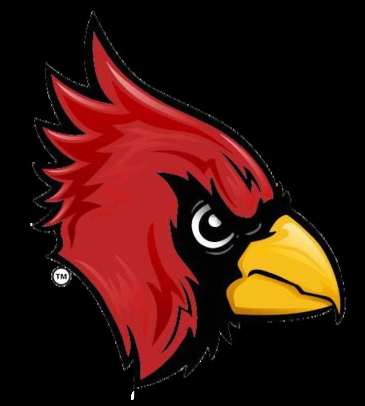 Ellendale High School mascot