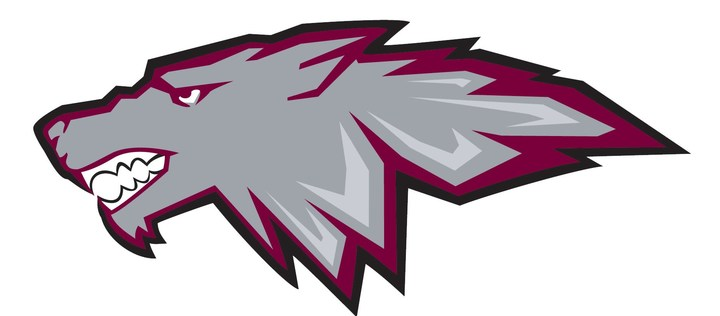 Cardinal Stritch University mascot