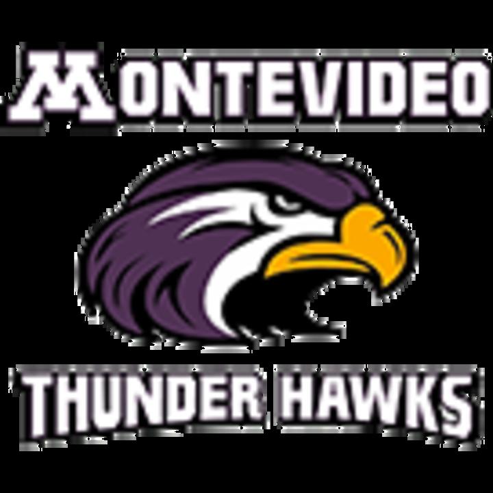 Montevideo High School mascot