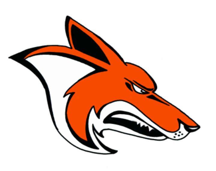 Williston High School mascot