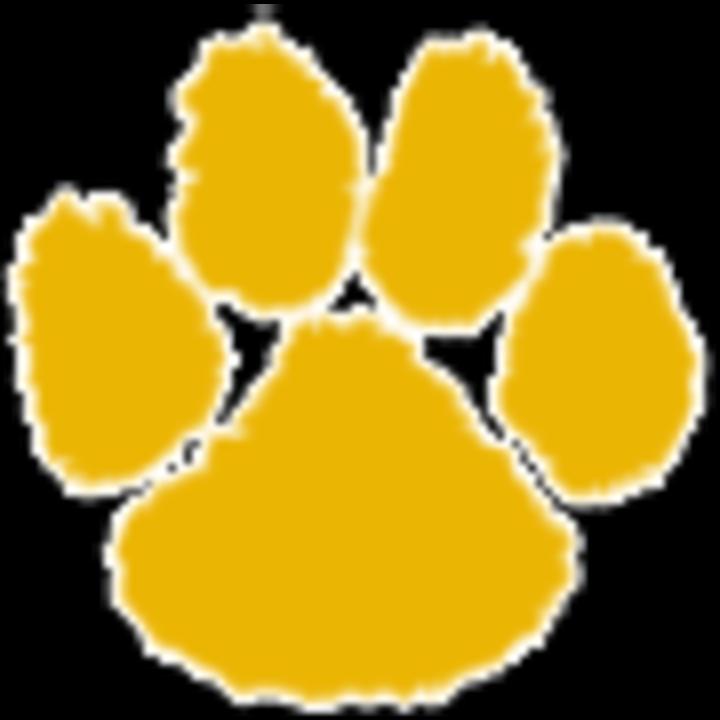 Thief River Falls High School mascot