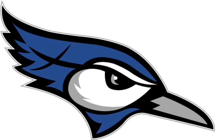 Central Minnesota Christian mascot