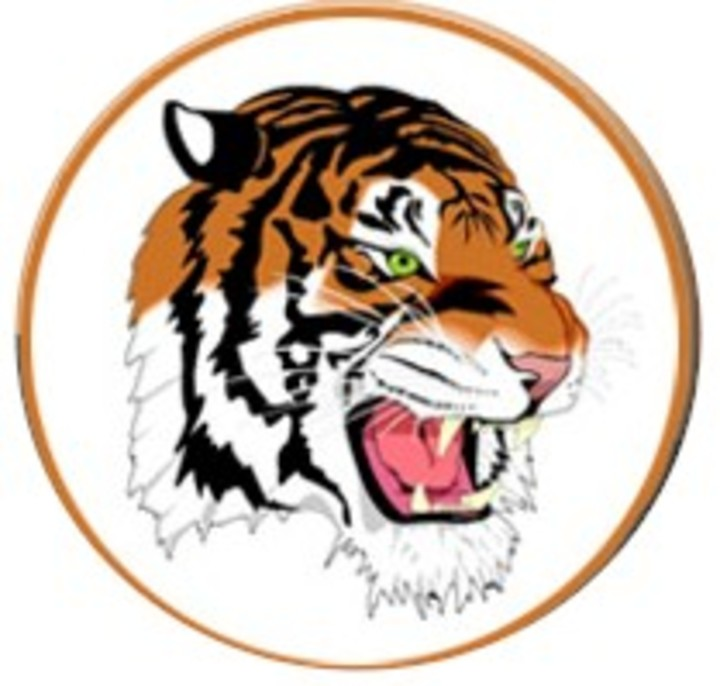 Mercer School mascot