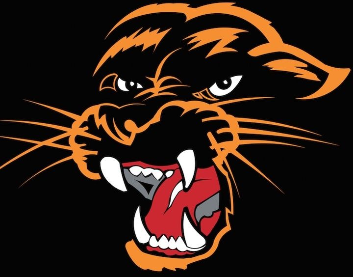 West Salem High School mascot