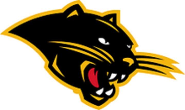 Ohio Dominican University mascot
