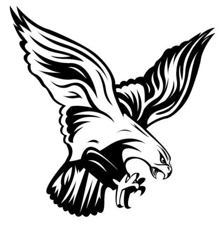 Flambeau High School mascot