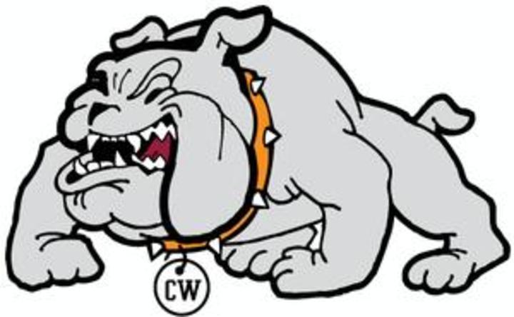 Chetek-Weyerhaeuser High School mascot